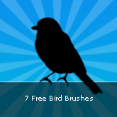 Bird Brushes: Set #08
