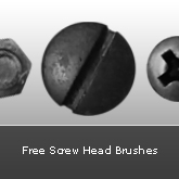 Screw Head Brushes: Set #10