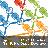 Importance Of A Well-Structured Plan To Hire Drupal Developer