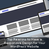 Top Reasons to Have a Responsive Design for Your WordPress Website